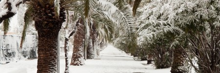 Ways to Save Energy in Florida During the Winter